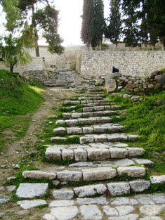 Ancient Stairs at St. Peter in Gallicantu