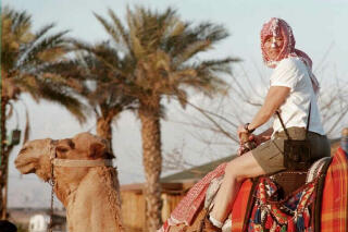 Riding the camel